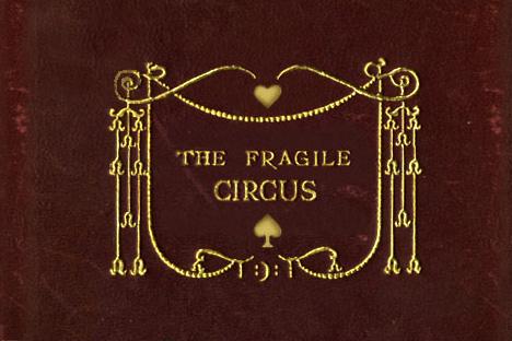 The Fragile Circus